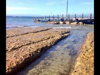 The Rockpool, Currarong.